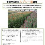 プレスリリースvol.35  彼岸に向けプレー菊最盛_pages-to-jpg-0001